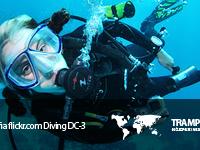 Miłośnicy nurkowania powinni wybrać urlop w Egipcie. Panują tam doskonałe warunki do nauki
